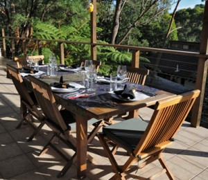 Our deck in a bushland setting