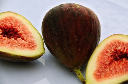 fruit of the month: figs
